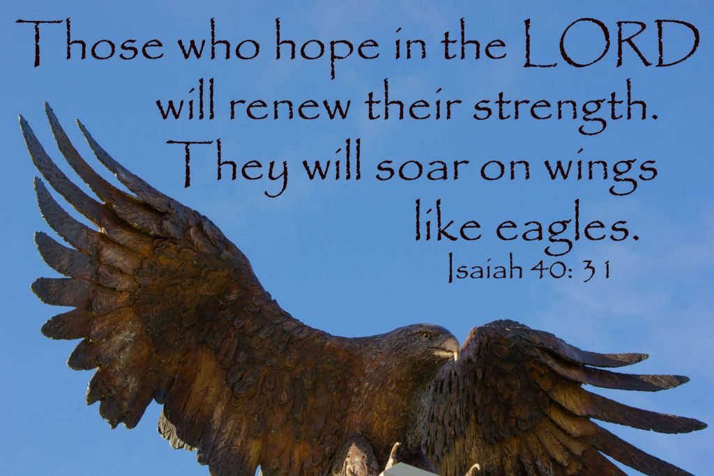 Eagle's wings 3 with text 1500